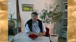 Vertraulich 10 - Gespräch mit Richard Weigerstorfer
